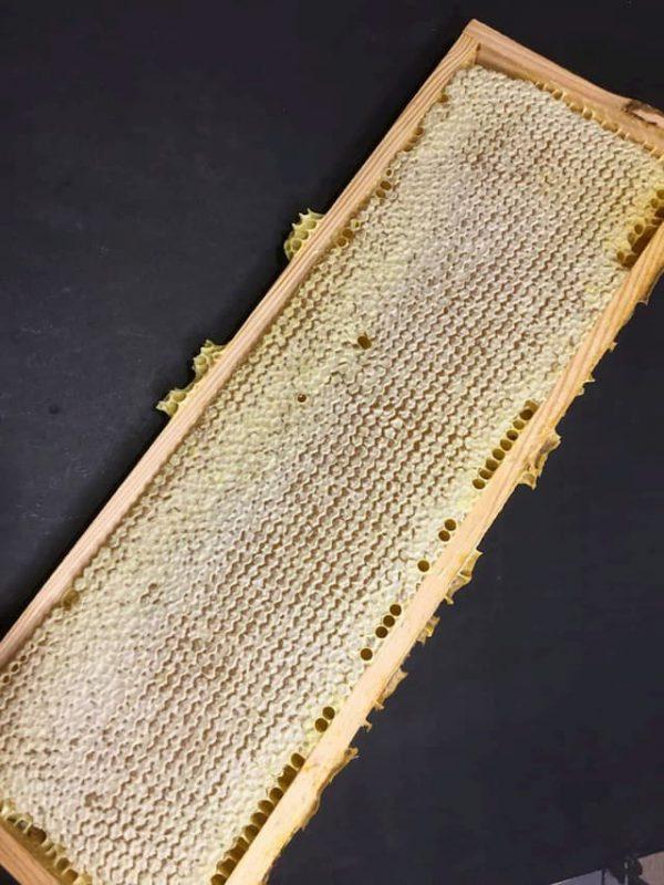 Мед в сотах рамка