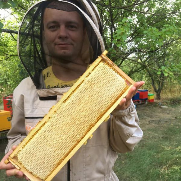 Сотовый мед с пасеки
